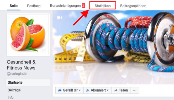 Facebook Fanpage Analyse